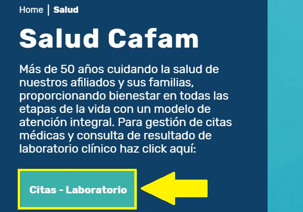 Datos de laboratorio Cafam